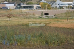 Featured here is Bomanite Grasscrete, a partially concealed concrete system that allows alleviation of drainage issues while maintaining strong structural integrity and preservation of the natural landscape.